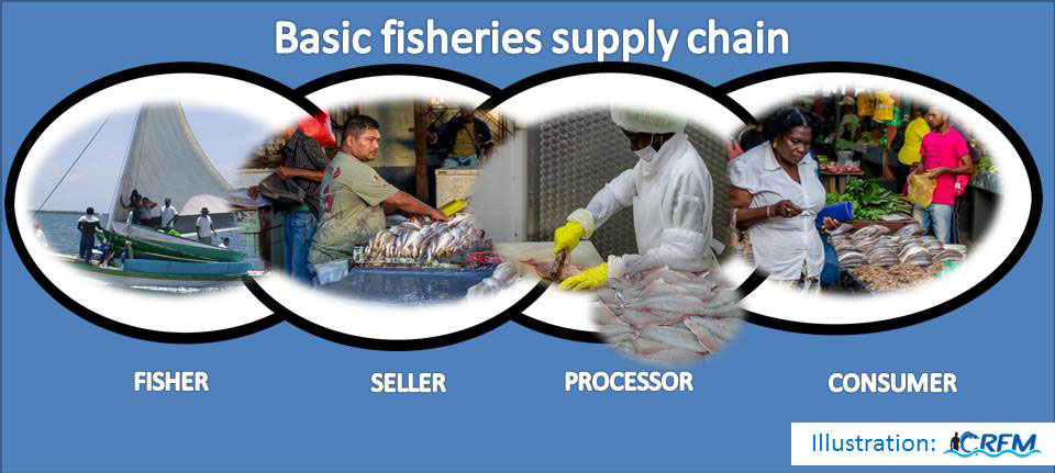 Basic-fisheries-supply-chai