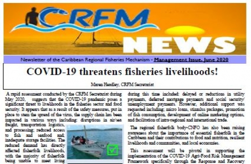 Newsletter of the Caribbean Regional Fisheries Mechanism - Management Issue, June 2020