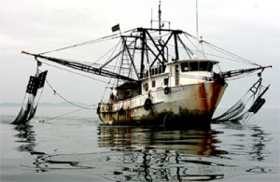 IUU fishing is a regional and international concern
