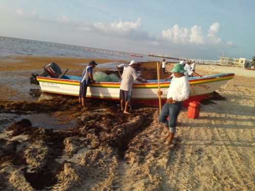 Sargassum Products for Climate Resilience to mitigate harsh impacts on Caribbean States